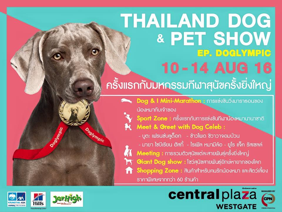 Thailand Dog and Pet show@CentralPlaza WestGate